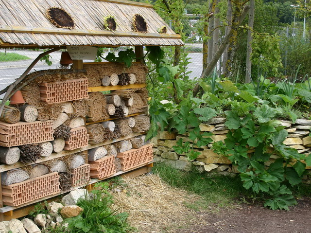 insektenhotel_steinmauer_nuetzlingsunterkunft