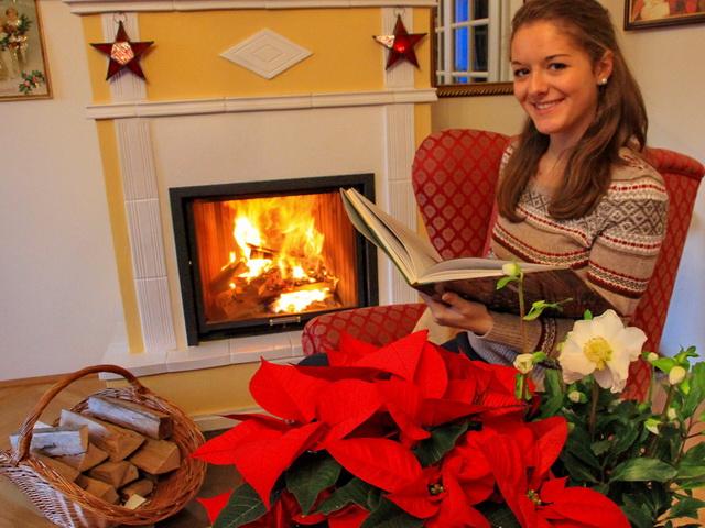 Weihnachtsstern und Christrose