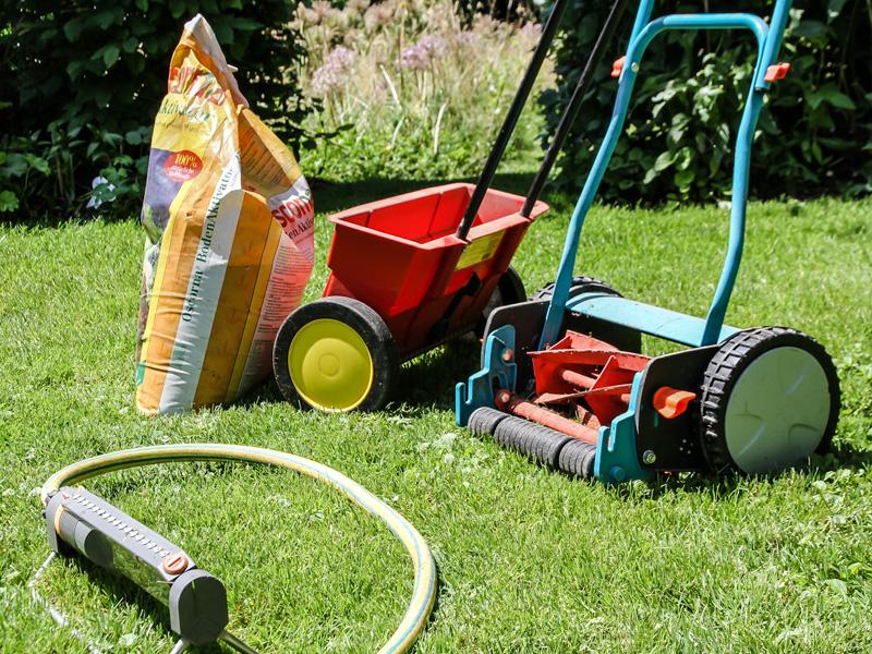 Rasenpflege-im-Sommer800x600