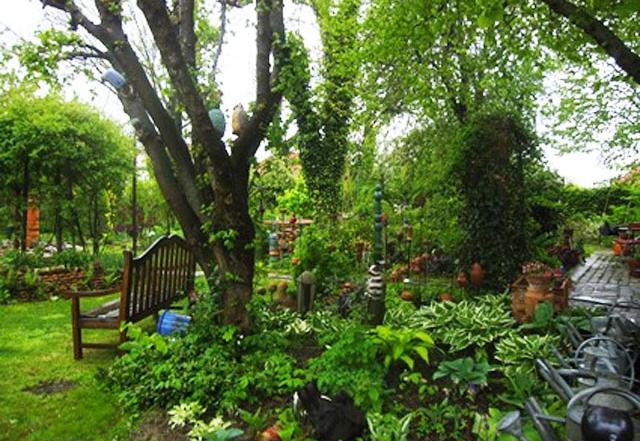 Natur im Garten in Lutzmannsburg