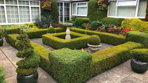 England 2018 - The Beeches - ein privater Garten eines Perfektionisten