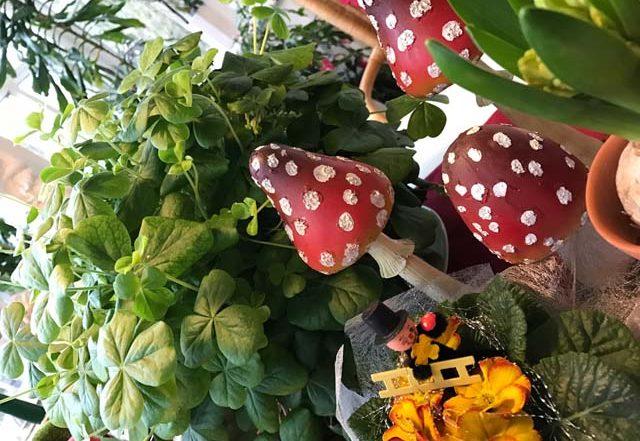 Grüne Pflanzen für Silvester