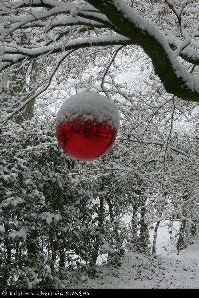 """Siegerbild """"Weihnachtlicher Gartenzauber"""""""