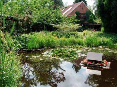 Garten in Ostfriesland
