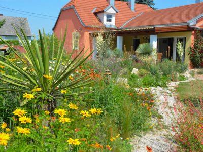 Yucca bringt mediterrane Stimmung in den Garten