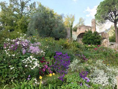 Gartenreise Rom - Ninfa