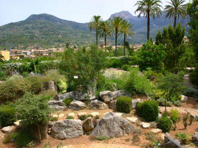 Mallorca - Botanischer Garten Soller
