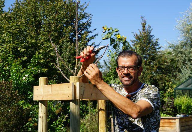 Biogärtner Karl Ploberger beim Apfelbaum-Schnitt