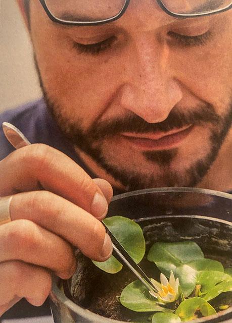 Der Pflanzen-Messias mit seiner-Mini-Seerose