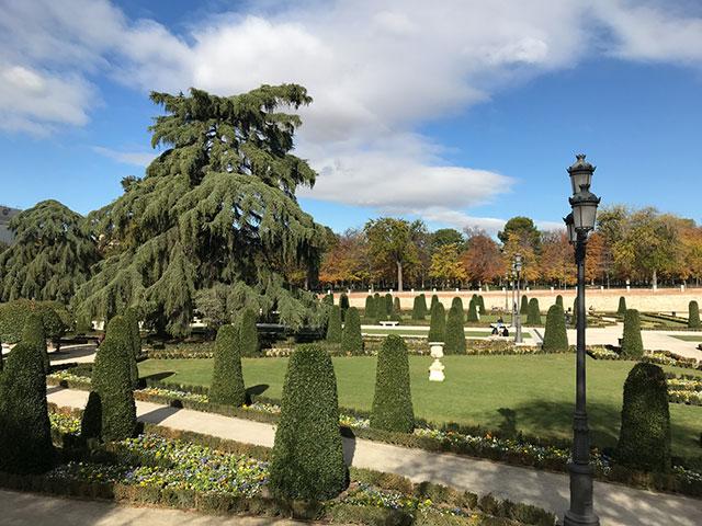 Parks in Madrid - selbst das Gras überlebt die Hitze