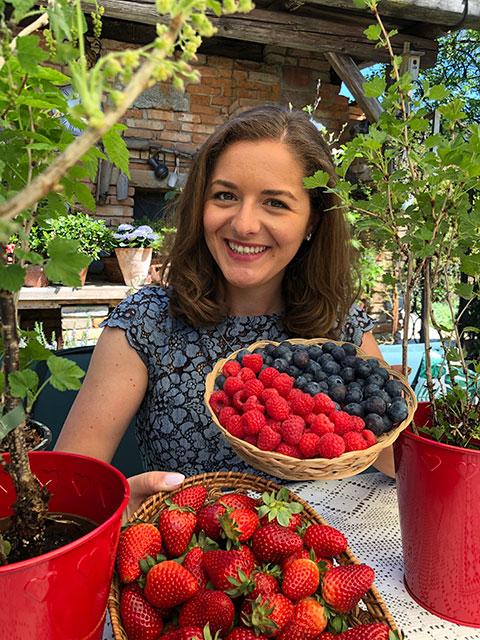 Himbeeren, Heidelbeeren, Erdbeeren