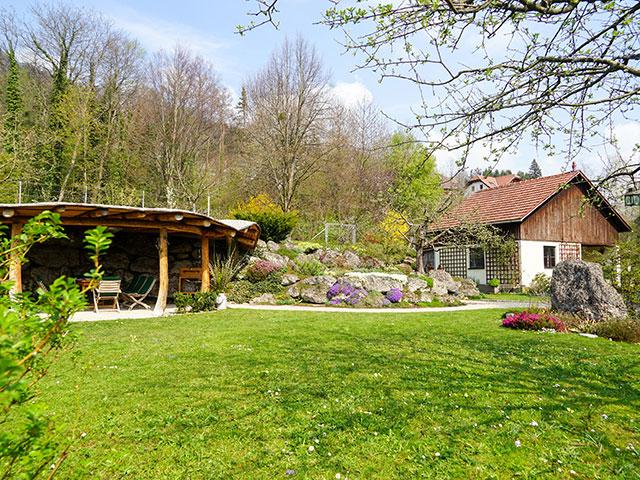 Natur im Garten am 28. April 2019