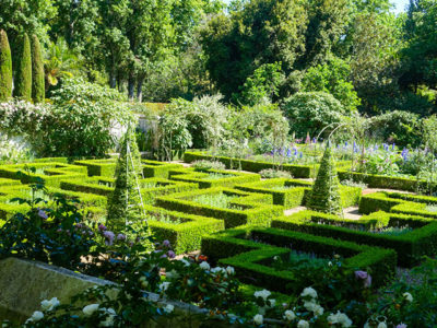 Garten in Stellenberg