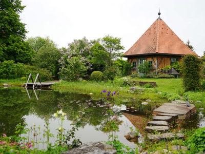 Natur im Garten bei Rosemarie Wintersteiger in Graz (Bild: ORF/Talk TV/Natur im Garten/Leopold Mayrhofer)