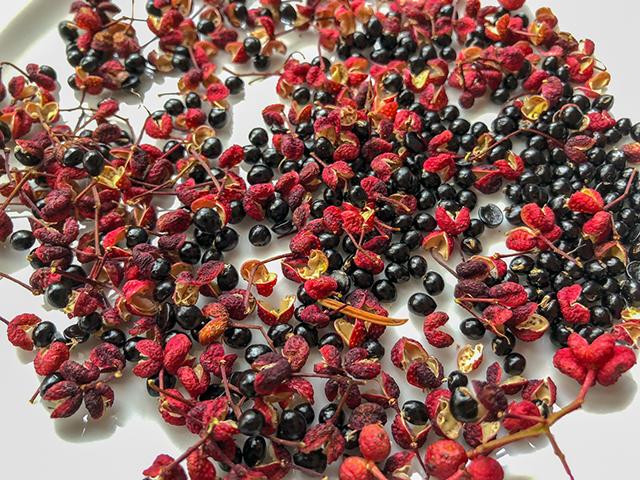 Pfeffer - Die Schalen sind voller Würze, die Samen werden aussortiert