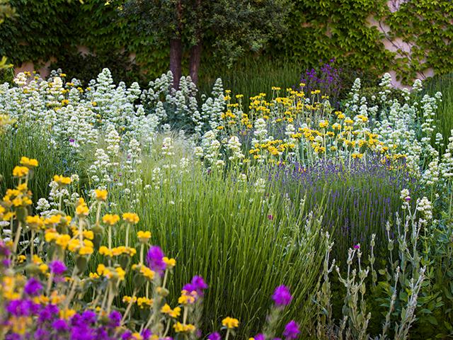 Garten in Madrid (Bild: Claire Takacs)