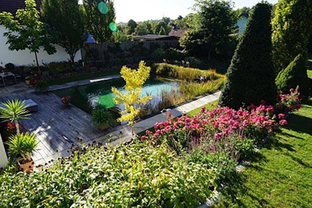 """""""Natur im Garten"""" in Langenlois (Bild: ORF/L. Mayrhofer)"""