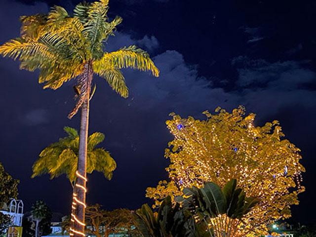 Weihnachten auf Guadeloupe