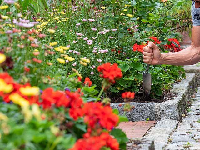 Gartenarbeit (Bild: Christoph Böhler)