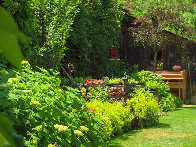 Niederösterreich: Gastgarten von Brigitte Parbus in Wolfpassing
