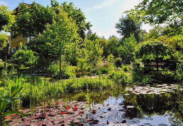 Plobergers Natur-Biotop