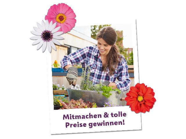 """Fotowettbewerb """"Mein blühendes Zuhause"""""""