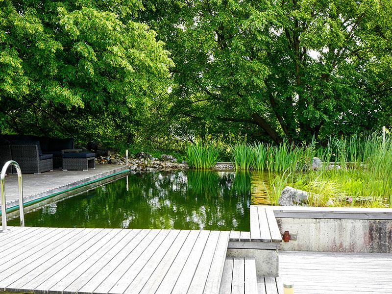 Natur im Garten (Bild: ORF/H. Fuchs)