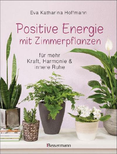 Buch: Positive Energie mit Zimmerpflanzen
