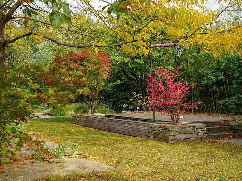 Natur im Garten (Bild: ORF/L. Mayrhofer)