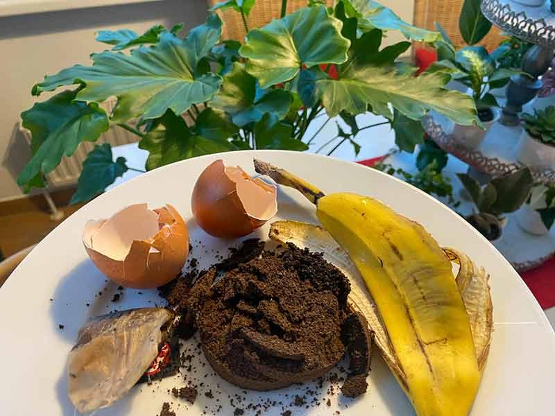 Kaffee, Eierschalen, Banane, Hausmittel als Dünger