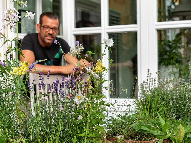 Garteln am Balkon mit Wildblumen